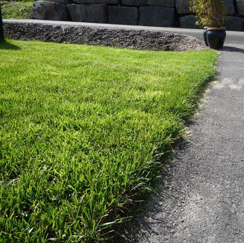 bilde av fix-ferdigplen sin plen eller gress lagt ut, det er veldig gr�nt